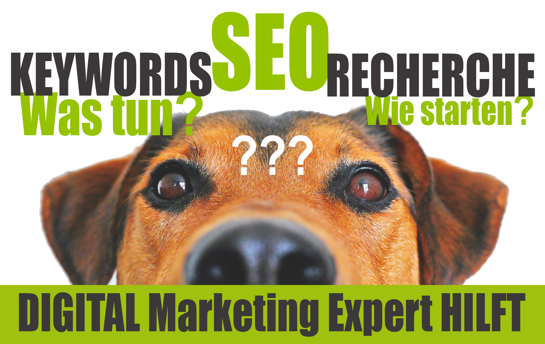 SEO Keyword-Recherche von DIGITAL Marketing Expert | mai projekte