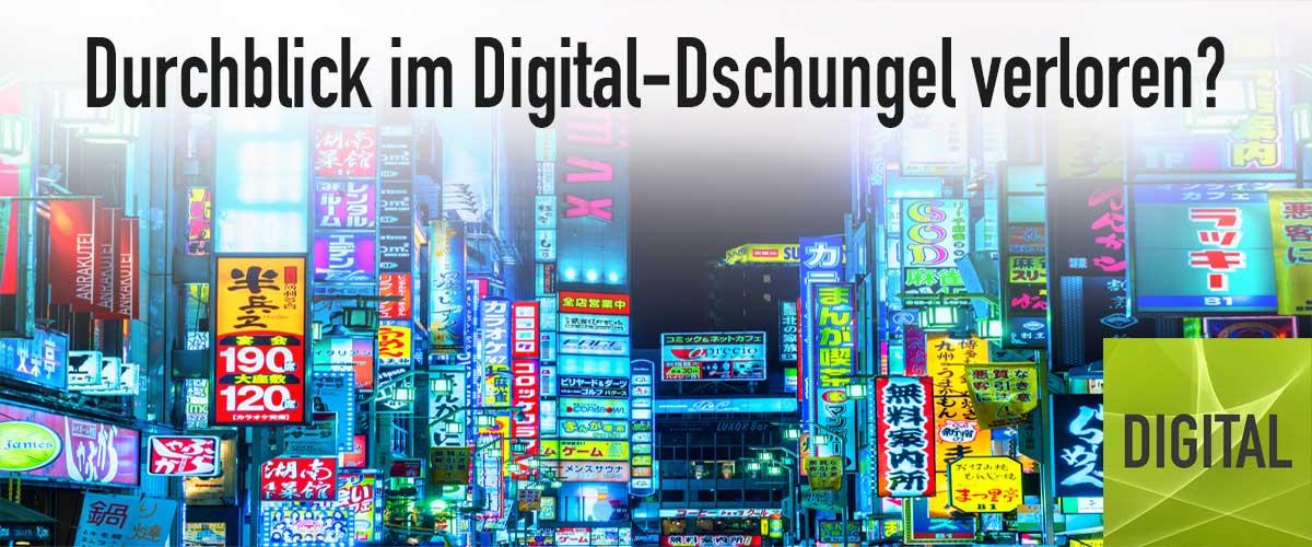 Digital | Maike Petersen behält den Durchblick im Digital-Dschungel