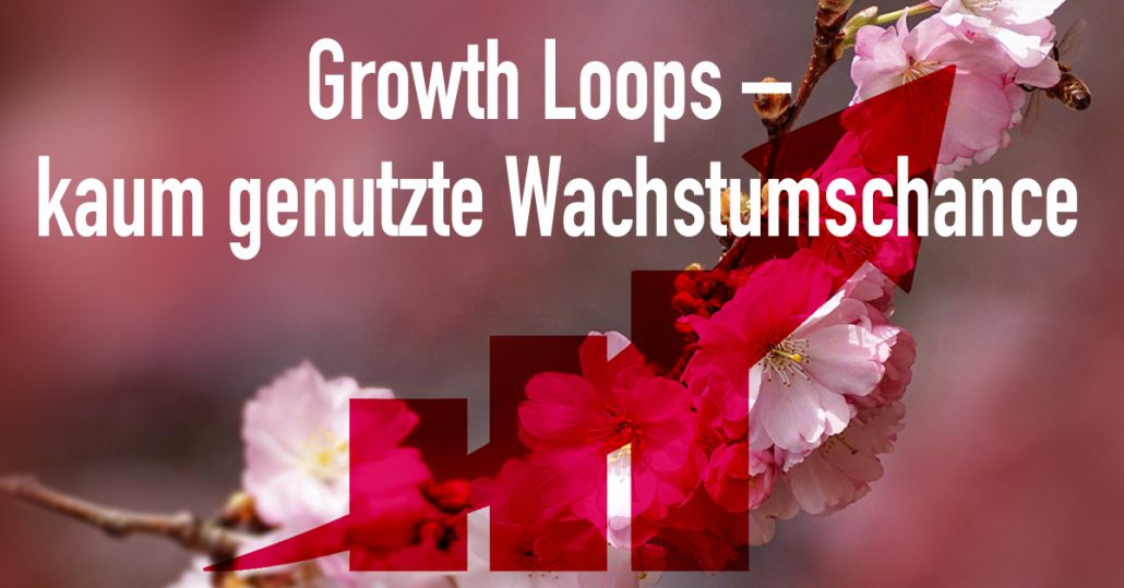 Growth Hack im Marketing - Growth Loops | DIGITAL Marketing Expert